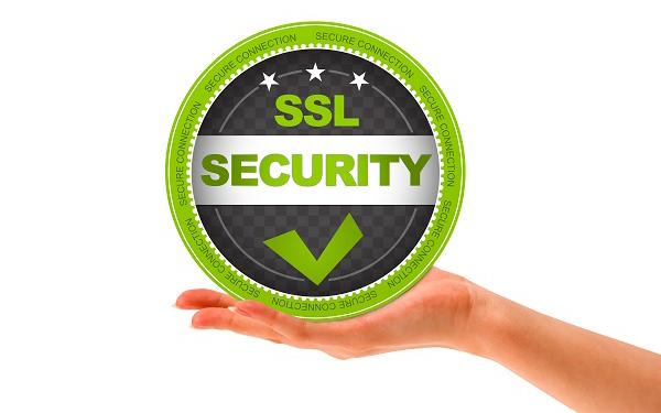 SSL Certificate   Dynu Systems,Inc.
