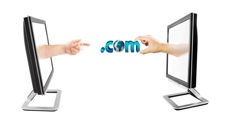Transfer Domain Name
